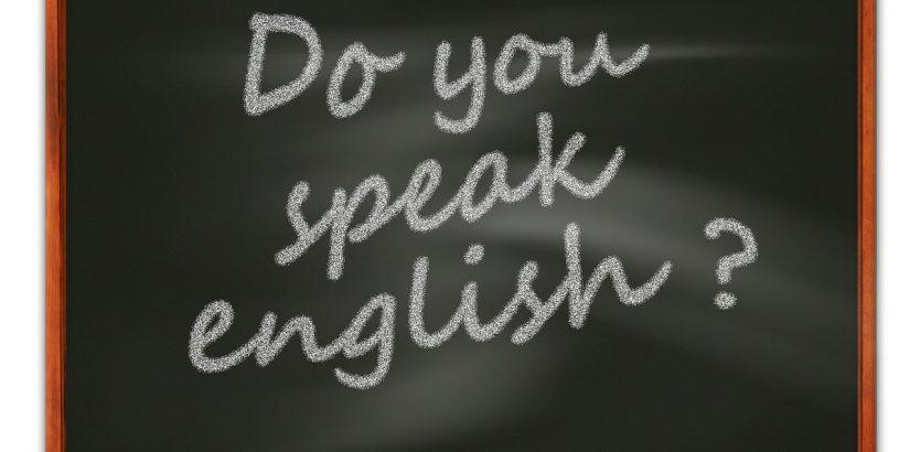 Közös nyelvet beszélünk ügyfeleinkkel, Precognox